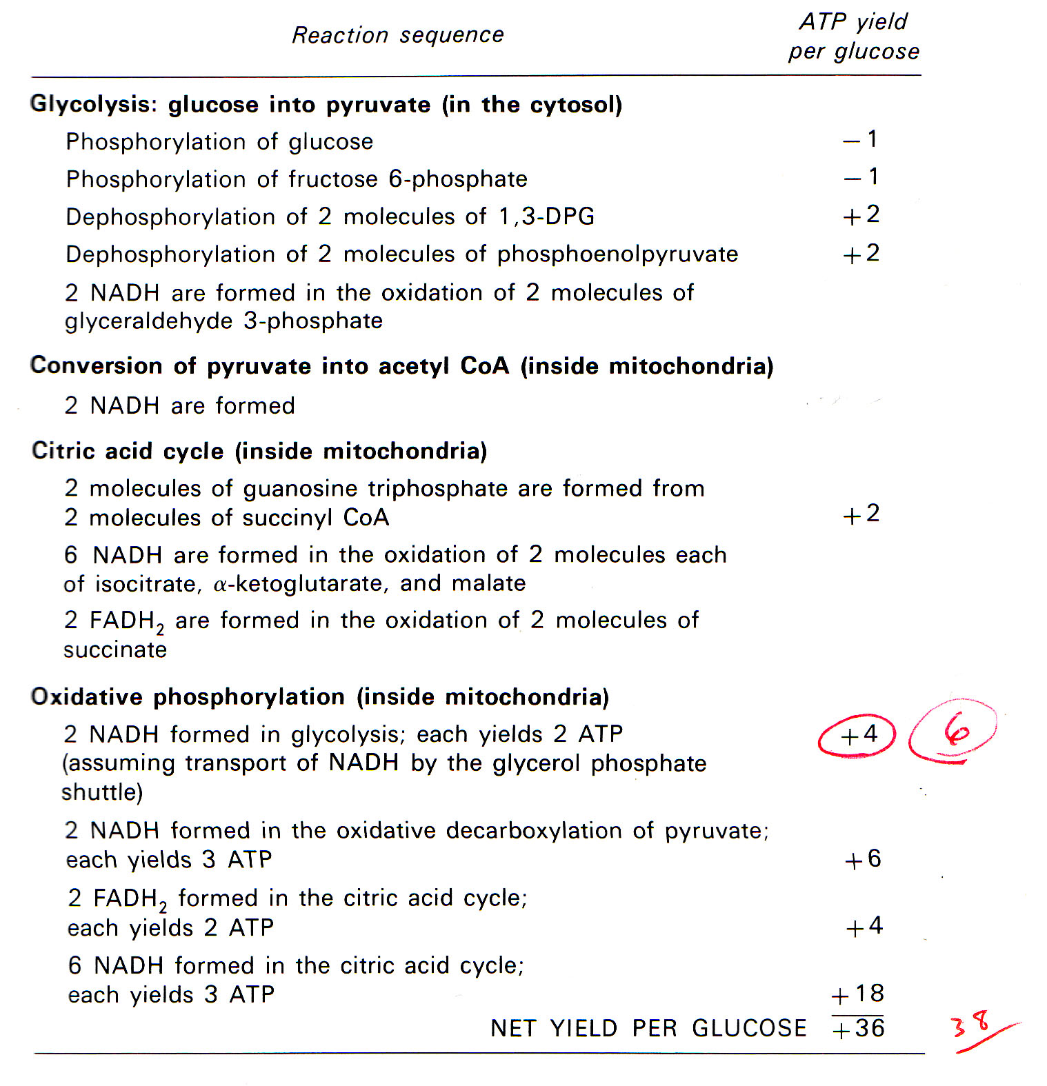 nelson biology units 1 and 2 how to download pdf